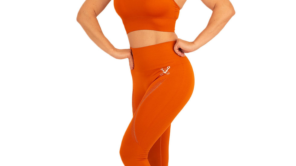 Aphrodite Rust seamless leggings & bra set