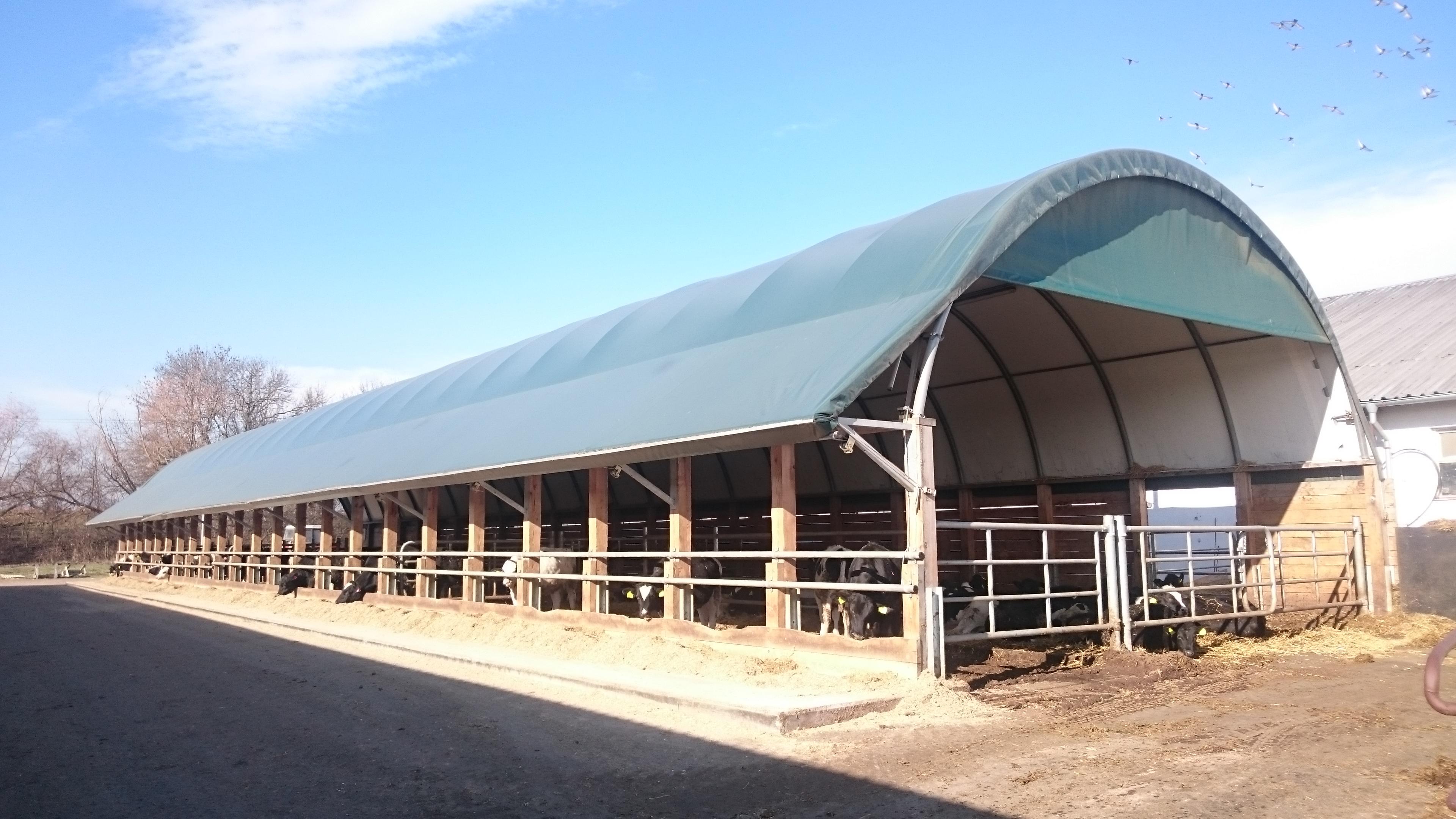 Plachtová hala pro mladý dobytek