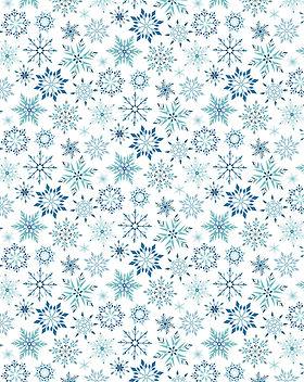 wintersmaple.jpg