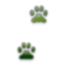 RxMobiliy little paws mobility icon