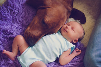 RxMobility dog and baby