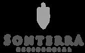 logo sonterra.png