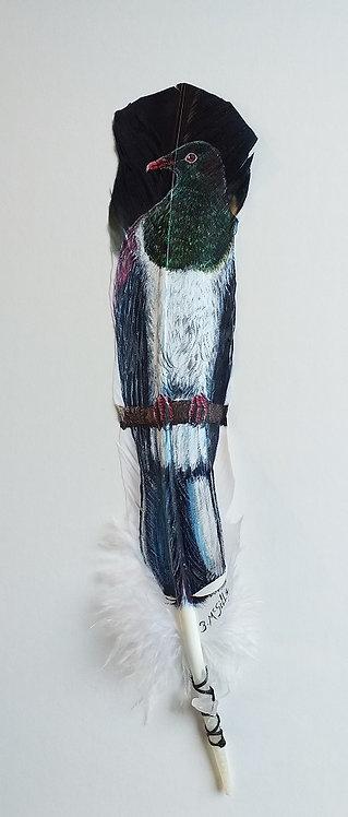 N.Z Wood Pigeon -Kereru