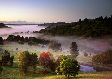 Mist landscape The Channon