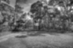 IMG_7316_tonemapped.jpg