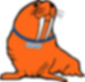 Wilson The Walrus-new.png
