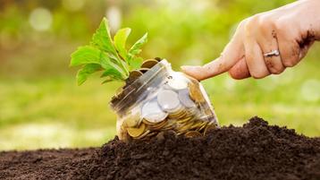Subsídios agrícolas aumentam desigualdade e afetam meio ambiente