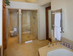 citrus-bathroom-shower