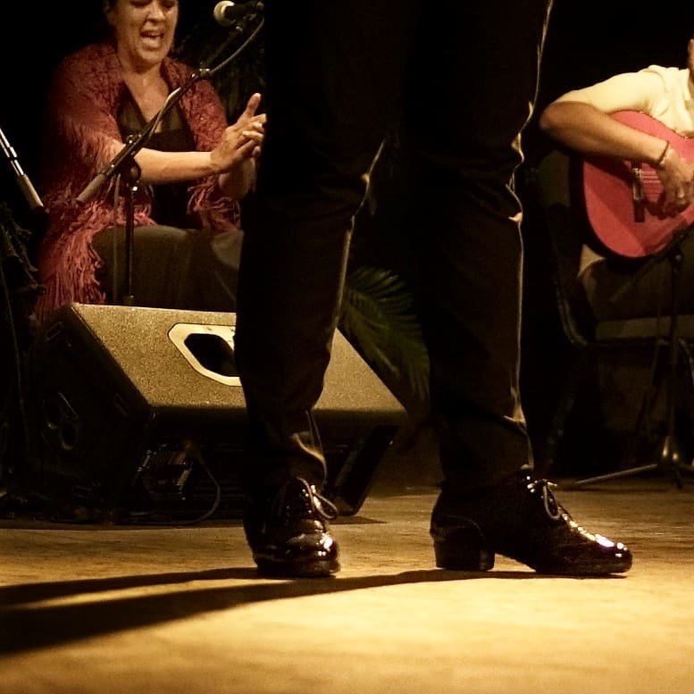 Art of flamenco