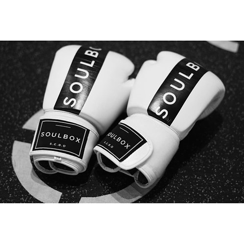 SOULBOX BOXING GLOVES