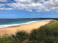 oceanfront land.jpg