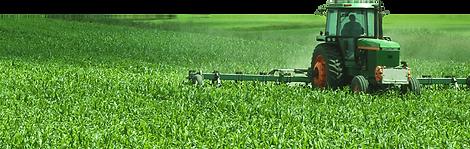 Green Field Farming.png