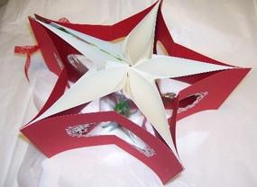 Starbook - Members work: Cheryl Wallace