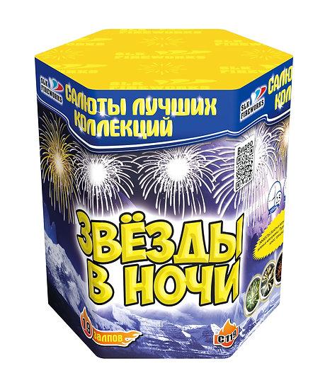"""С 119 Салют """"Звёзды в ночи"""""""