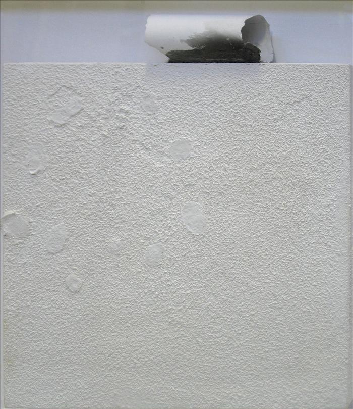 GUERZONI-TM0613-impossibili restauri-2011-cm45x40.jpg
