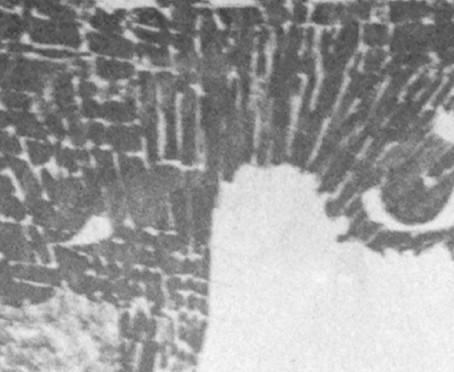 GIOSETTA FIORONI. ROMA ANNI '60 AL MARCA DI CATANZARO