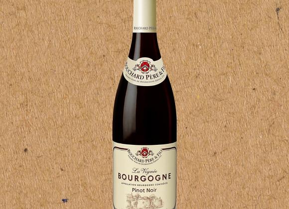 Bouchard Pere et Fils La Vignée (Pinot Noir Wine Pack)