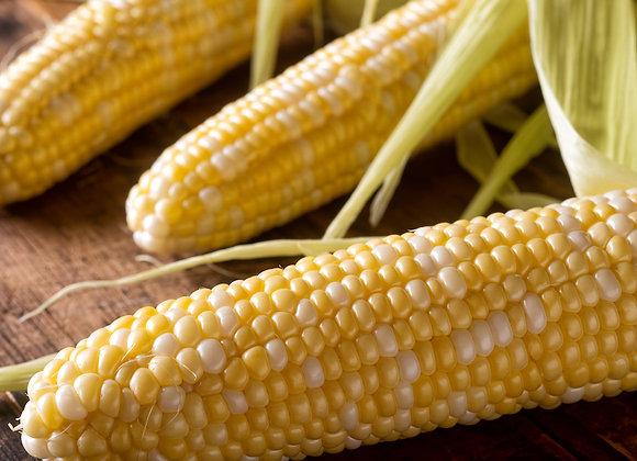 Bi-Color Corn (4 ears)
