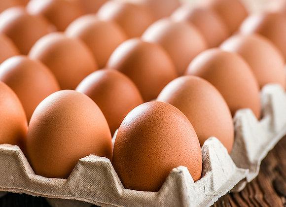 Lancaster County Fresh Eggs (dozen - Mother's Day) - PRE ORDER