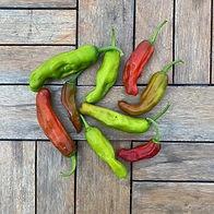 shishito peppers.jpeg
