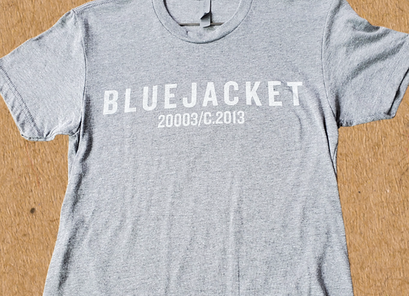 Classic Logo T-Shirt (Grey)
