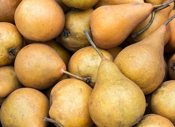 Bosc Pears (2ea)