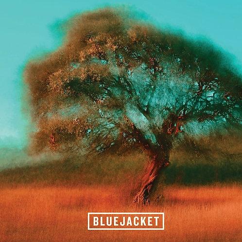 Bluejacket Dream Merchant (IPA - 4 Pack x 16 oz.)
