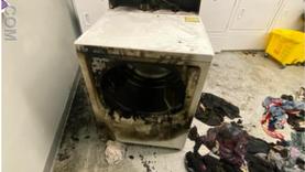 Dryer, Dryer, Pants on Fire