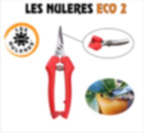 LES NULERES ECO 2.jpg