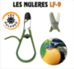 LES NULERES LF-9.JPG