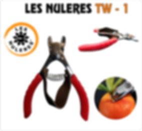 LES NULERES TW - 1.jpg