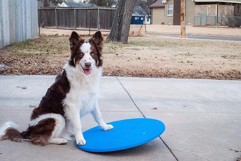 Dog wobble board