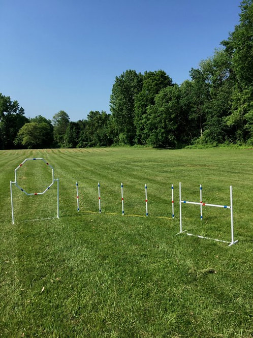dog agility equipment set