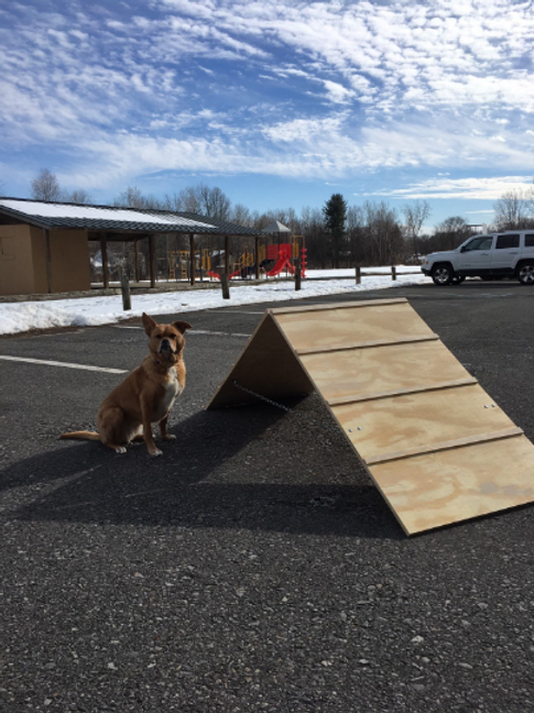 Dog Agility mini A Frame | Bare Wood Version