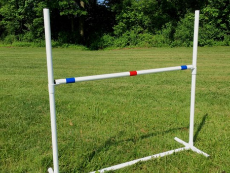 DIY dog agility jumps