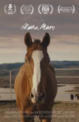 Alpha Mare