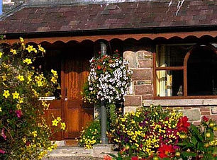 abbey-lodge-header-7_edited.jpg