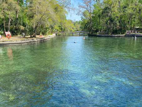 10 Brilliant Ideas for Rest Days in Orlando