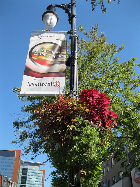 Quartier_Concordia_Montreal.jpg