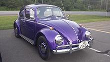 Larissa Barachie 1967 Bug.jpg