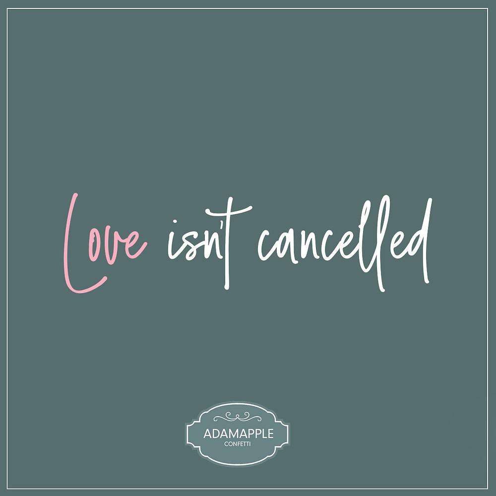 Love Isnt Cancelled | Corona Virus Wedding | Covid Wedding | Wedding At Home