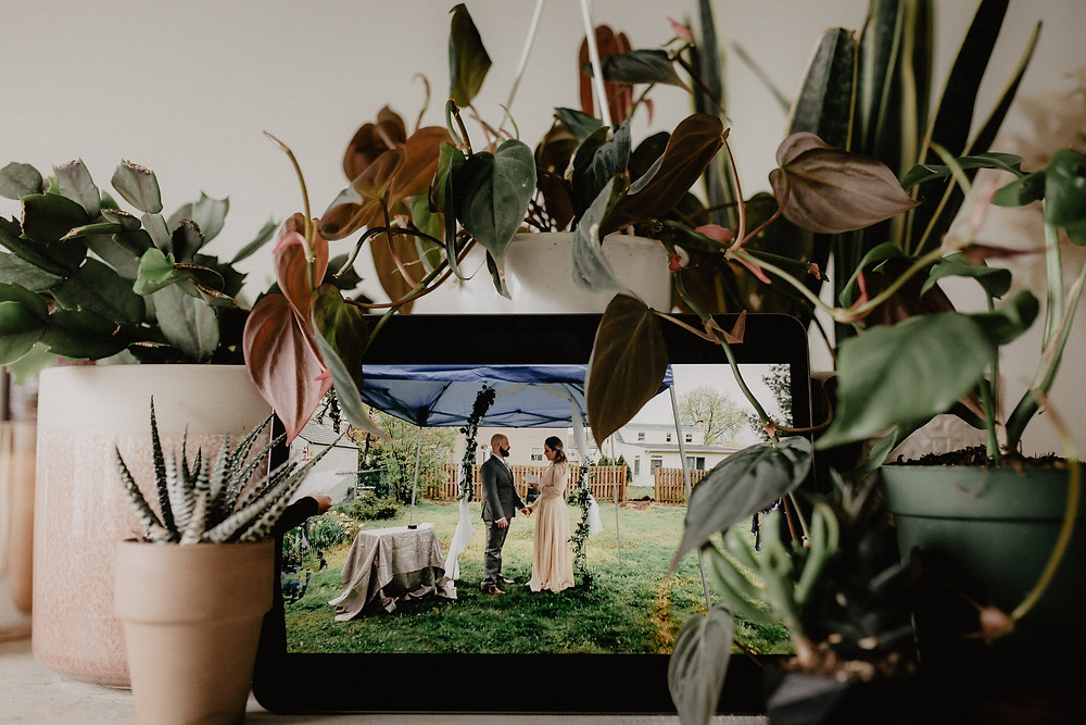 Plugged In Wedding | Online Wedding | Zoom Wedding