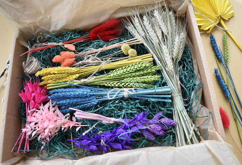 rainbow wreath. wreath making kit. dried flowers