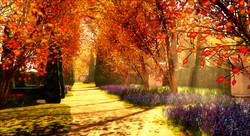 Autumn_005_007