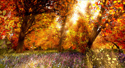 Autumn_005_002