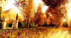 Autumn_005_005