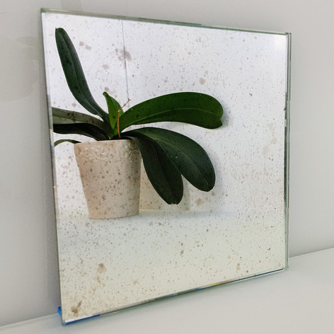 Mirror Samples