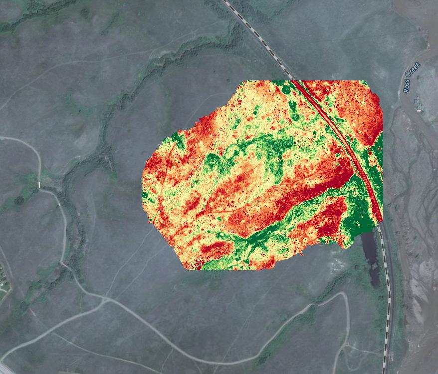 NDVI Vegetation Maps