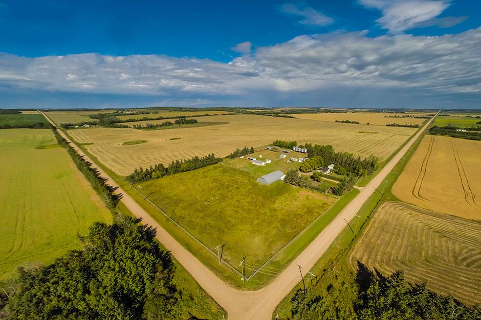 Farm / Homestead