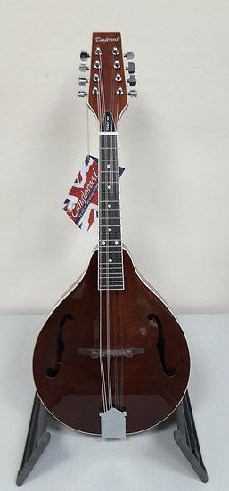 Tanglewood Mandolin TWMT MH